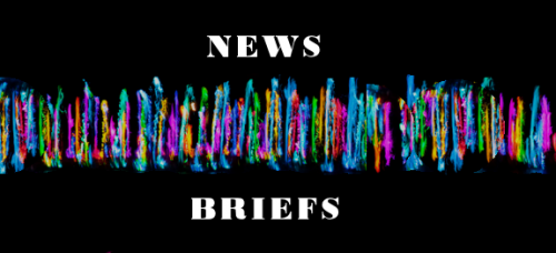 quick-news-briefs2